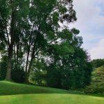 Golf course BKT 3