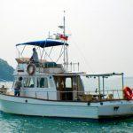 gone-fishing-01