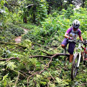 Mountain Bike Singapore Bukit Timah Nature Reserve